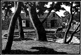 wood-engraving of The Farm Pond